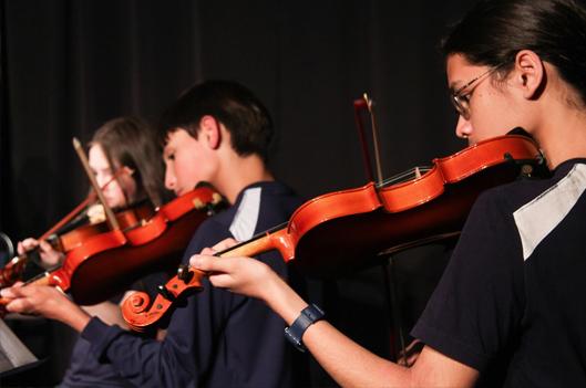 violino-1